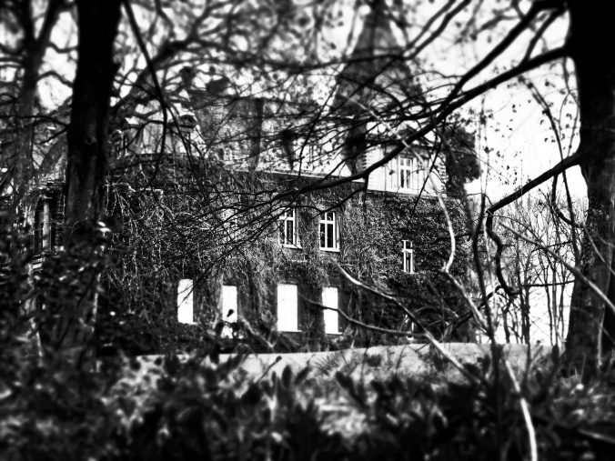 The legacy of Hill House: haunted spaces in Shirley Jackson's novels